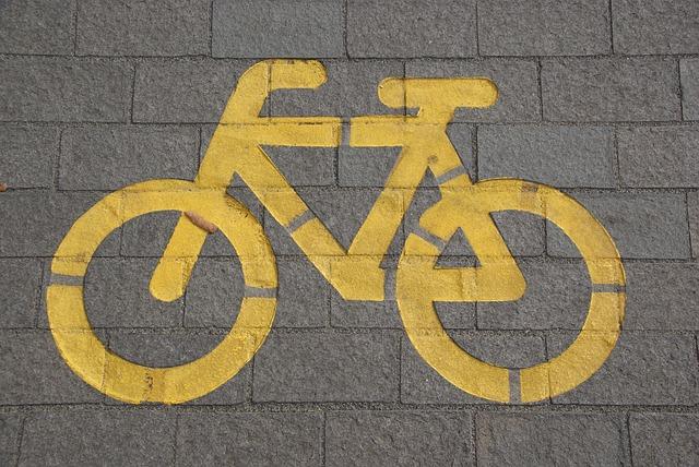 네덜란드 자전거 표지판 읽는 법