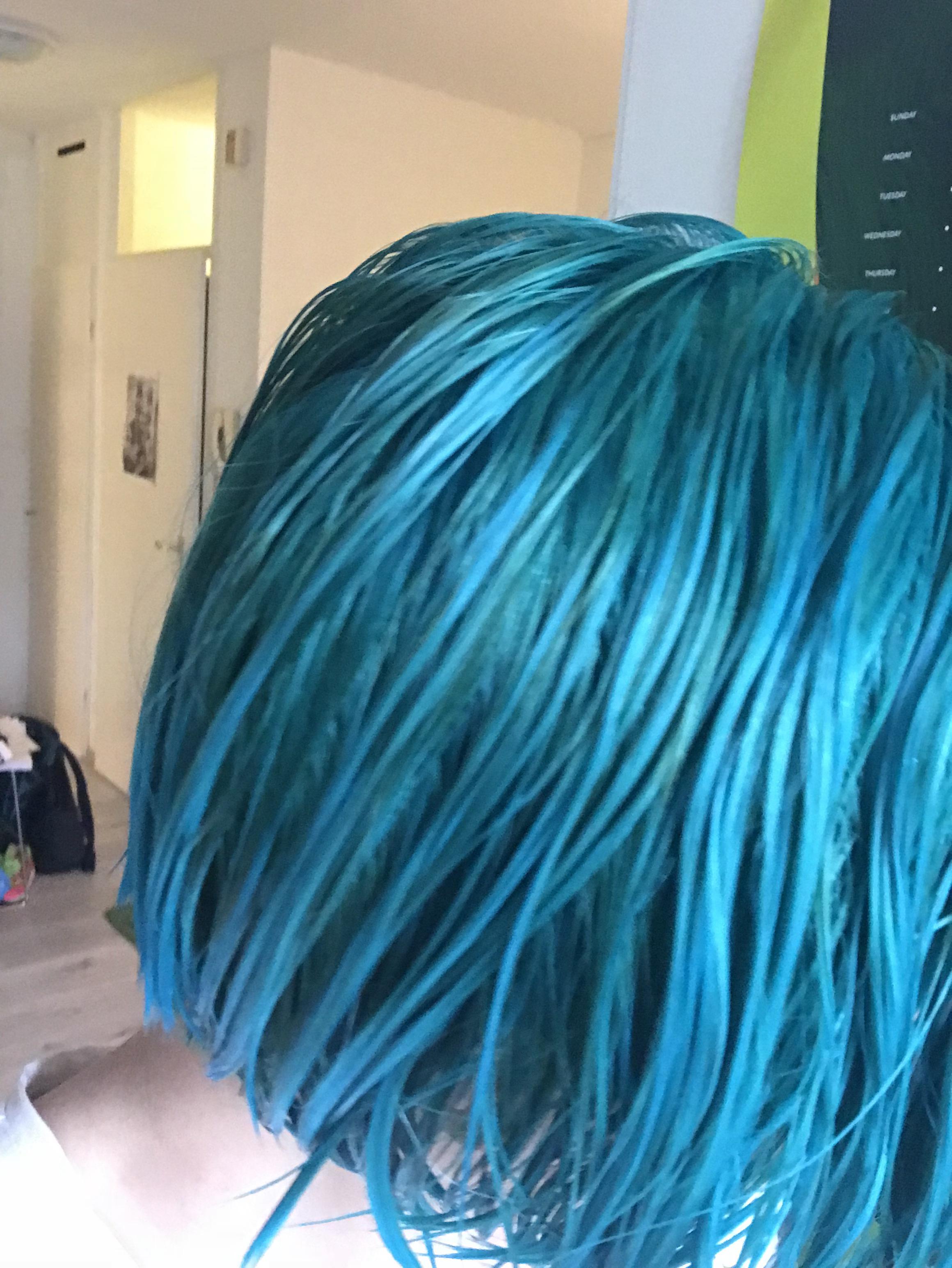 네덜란드에서 혼자 머리 탈색, 염색하기