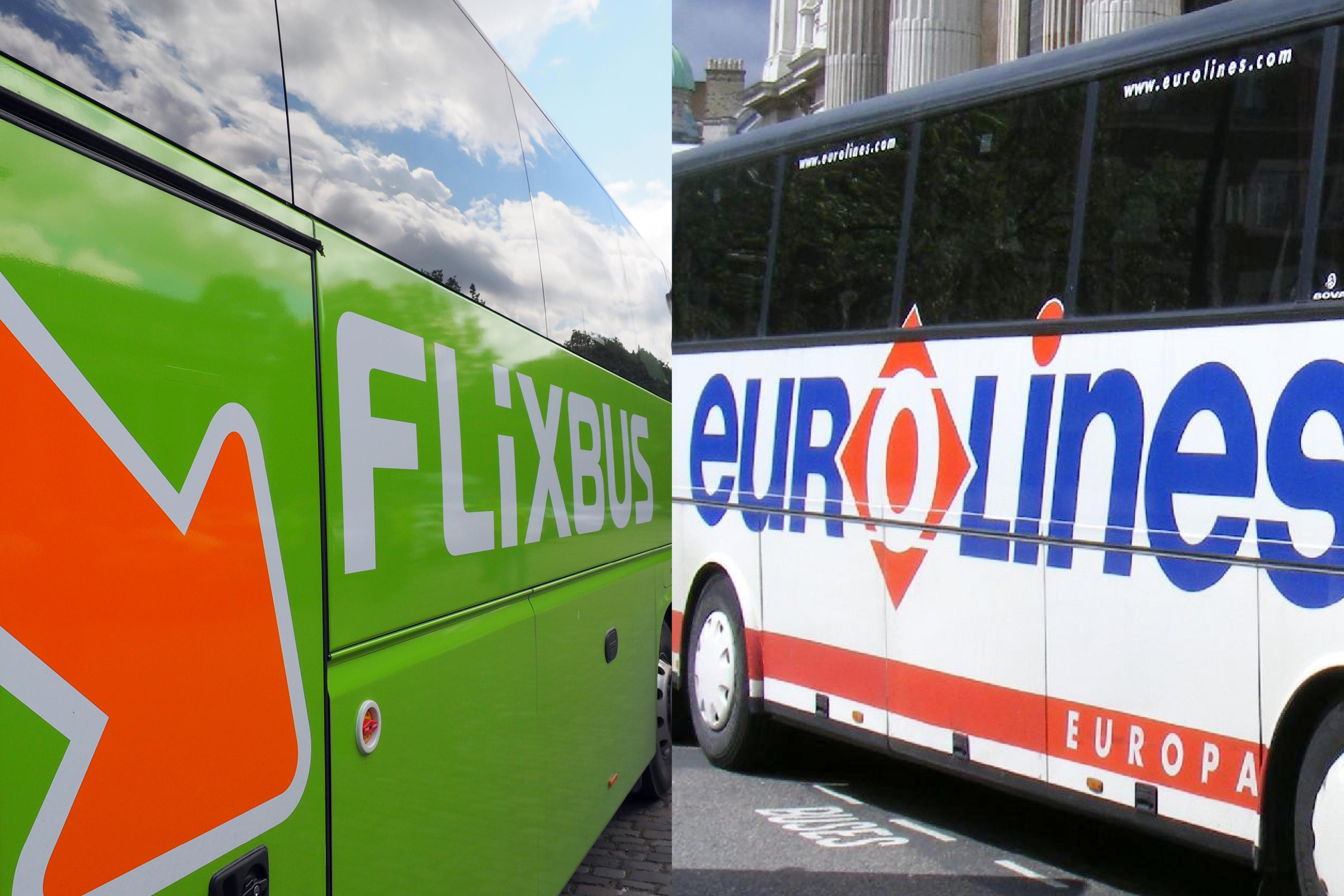 유럽여행할 때 저렴한 버스 추천, Flixbus 와 Euroline