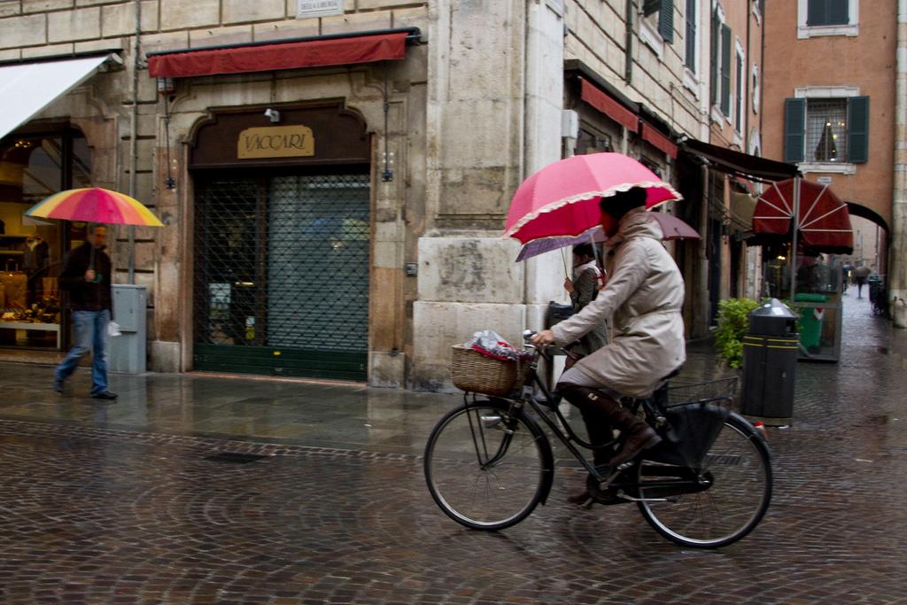 네덜란드 겨울의 비바람에서 살아남아 자전거타는 법