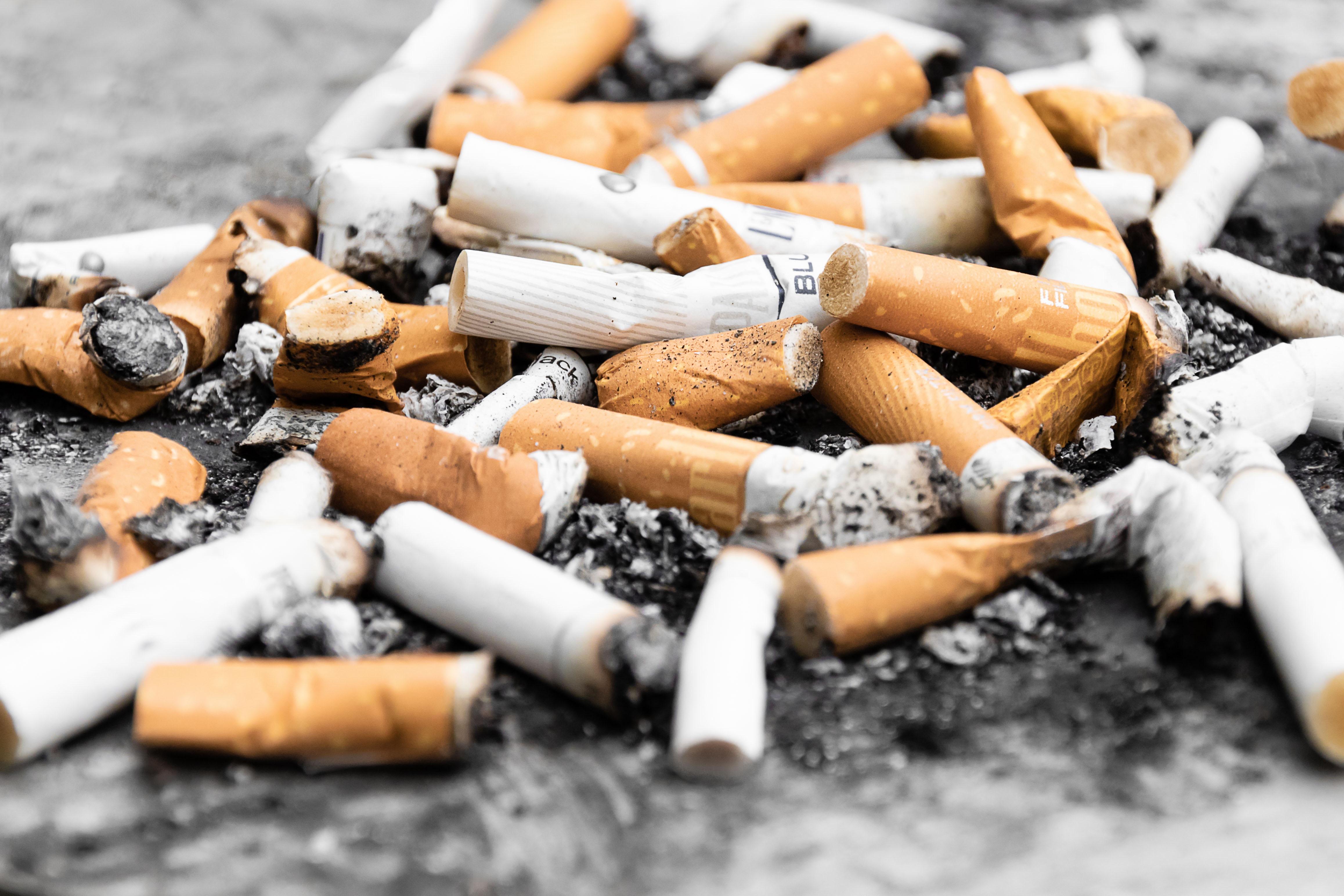 네덜란드 정부의 2020년 담배가격인상/규제 계획
