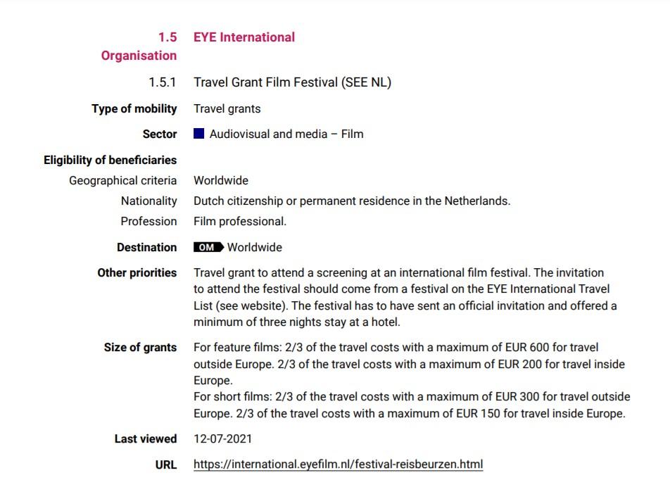 Dutch eye film festivals supporting scheme